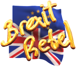The Brexit Rebel Shop link