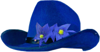 EU_supporting_hat